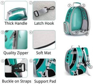 Best Cat Backpacks 2020: Examples, Buying Guide and How To Use 8