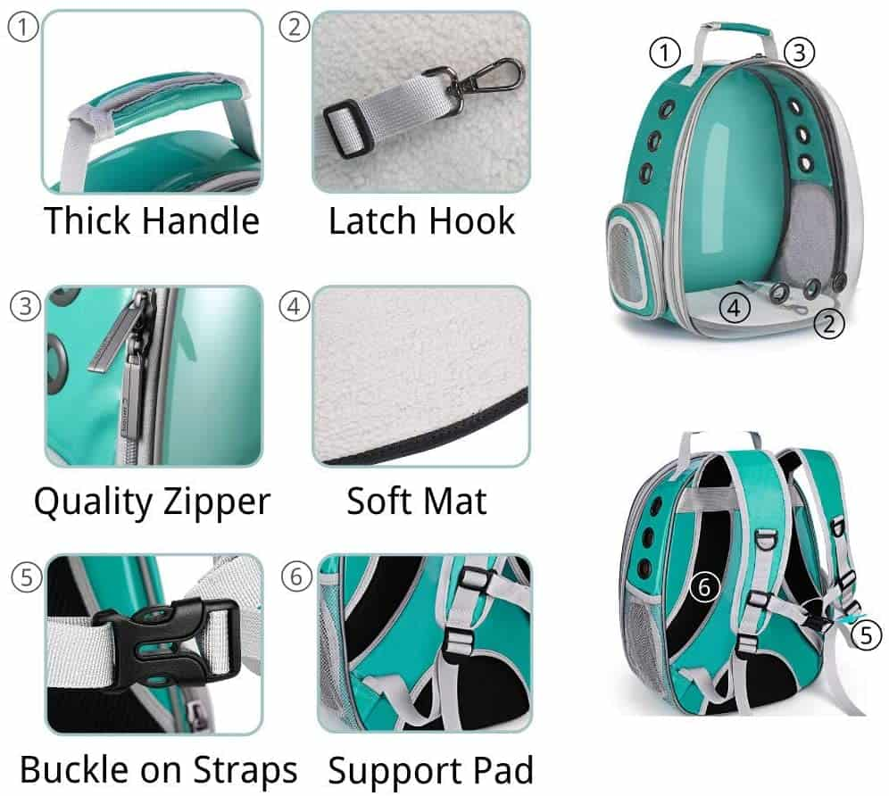 Best Cat Backpacks [year]: Complete Buying Guide 8