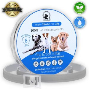 Best Cat Flea Collars for 2020: 7 Top Products to Get Rid of Pests 16
