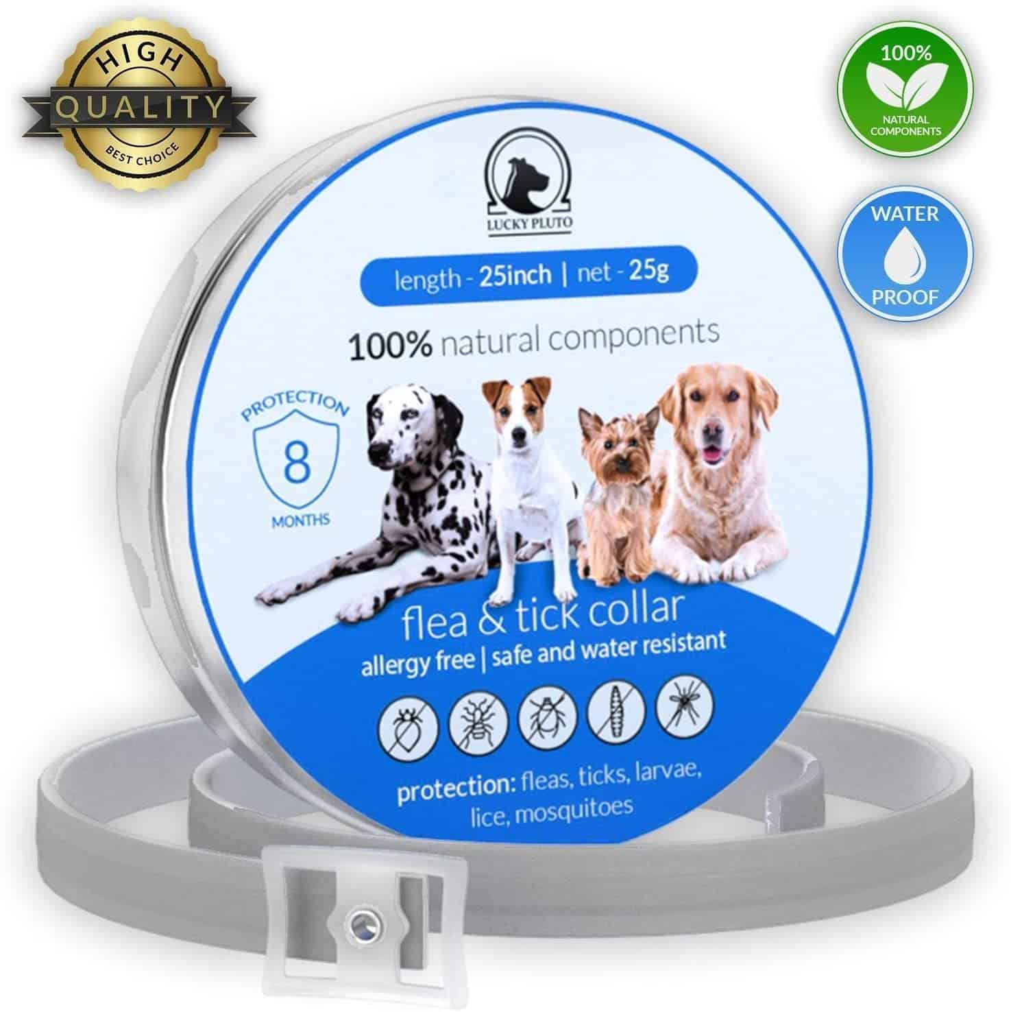Best Cat Flea Collars for 2020: 7 Top Products to Get Rid of Pests 7