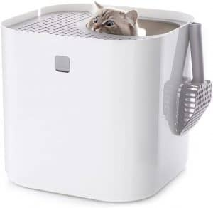 5 Best Top Entry Litter Box for Cats: 2020 Ultimate Guide 15