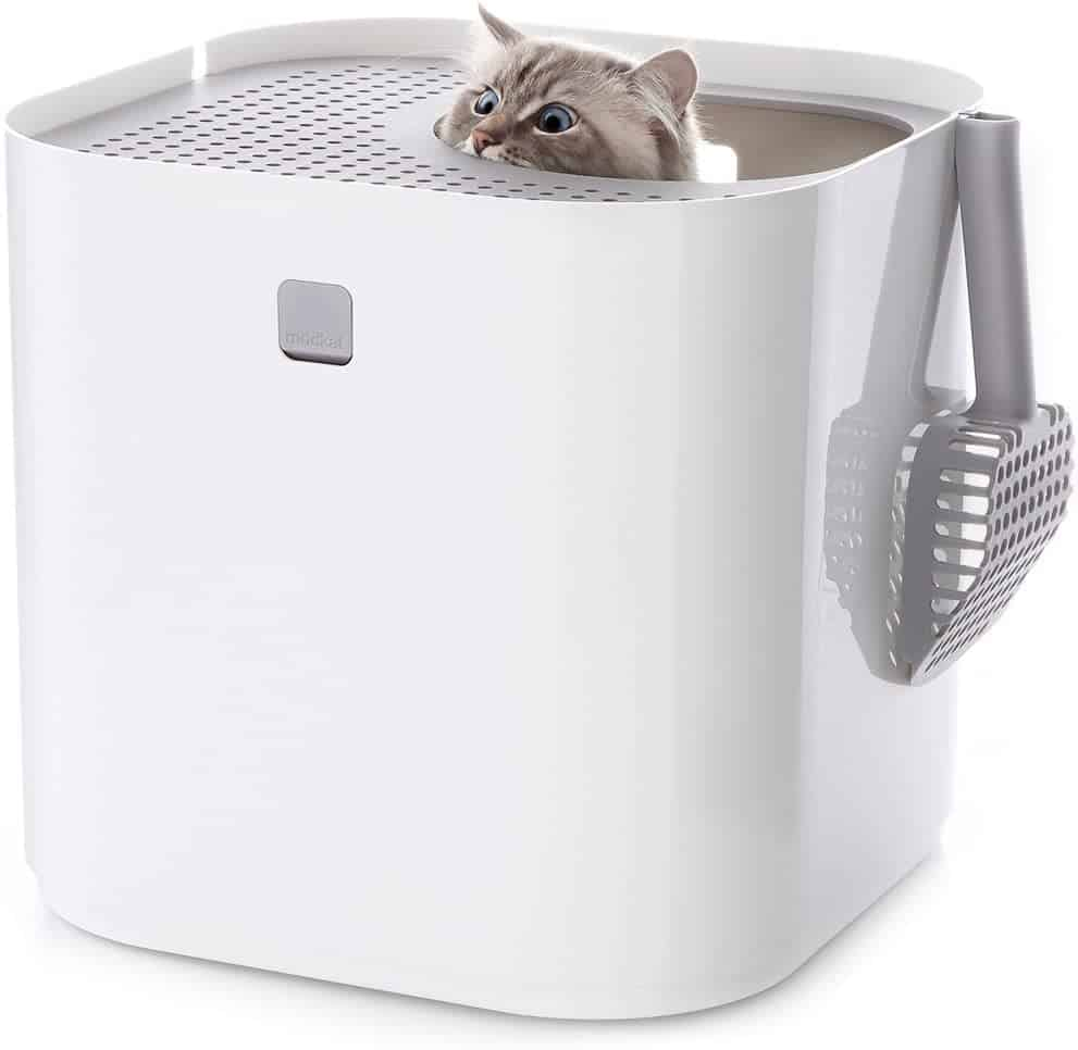 5 Best Top Entry Litter Box for Cats: 2021 Ultimate Guide 15