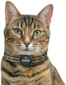 Best Cat Trackers for 2020 That Will Make Your Lives Easier 30