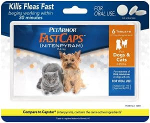Best Flea Treatment for Cats - Spot On, Oral Pills, Collar And Spray Reviews [2020] 14