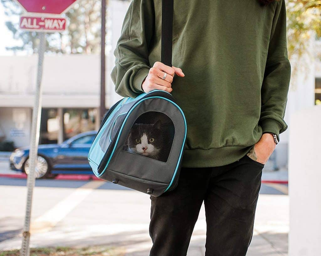 The Best Cat Carriers for 2021: Which Are They? 13