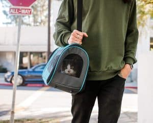 The Best Cat Carriers for 2020: Which Are They? 13