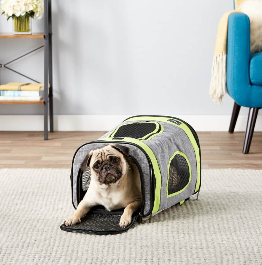 Best Cat Backpacks [year]: Complete Buying Guide 23