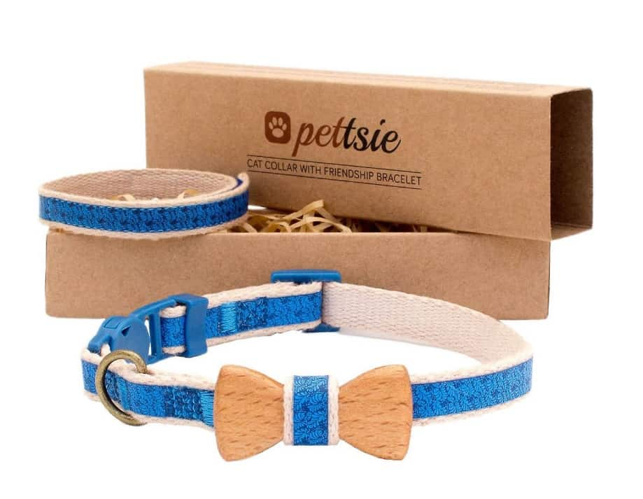 Reviews & Buyer's Guide for our Top 5 Best Cat Collars 2021 5