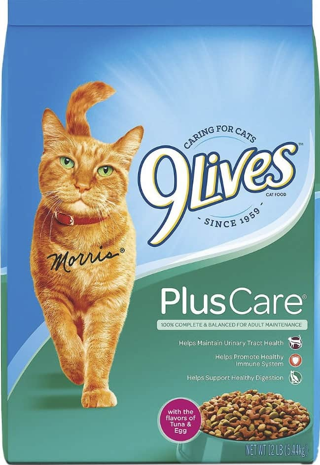 9 Lives Cat Food Review 2021: Tasty & Economical Cat Food 3