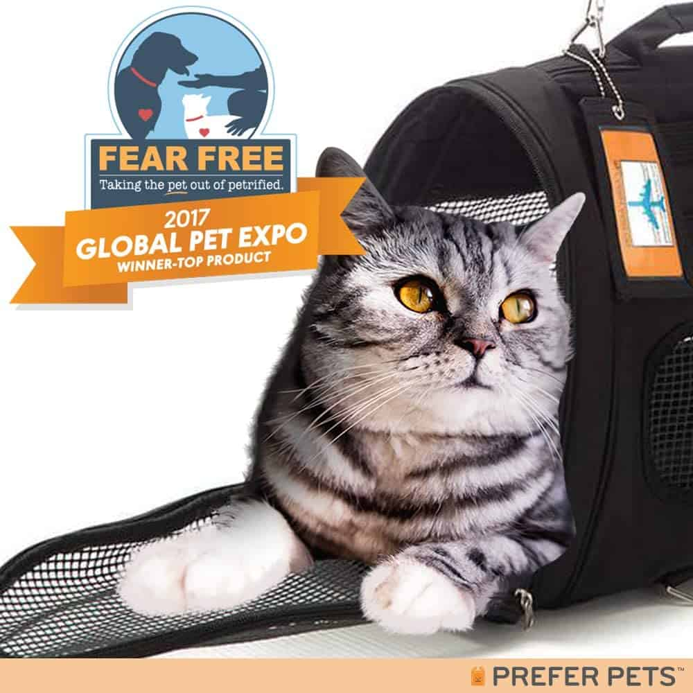 Best Cat Backpacks [year]: Complete Buying Guide 27