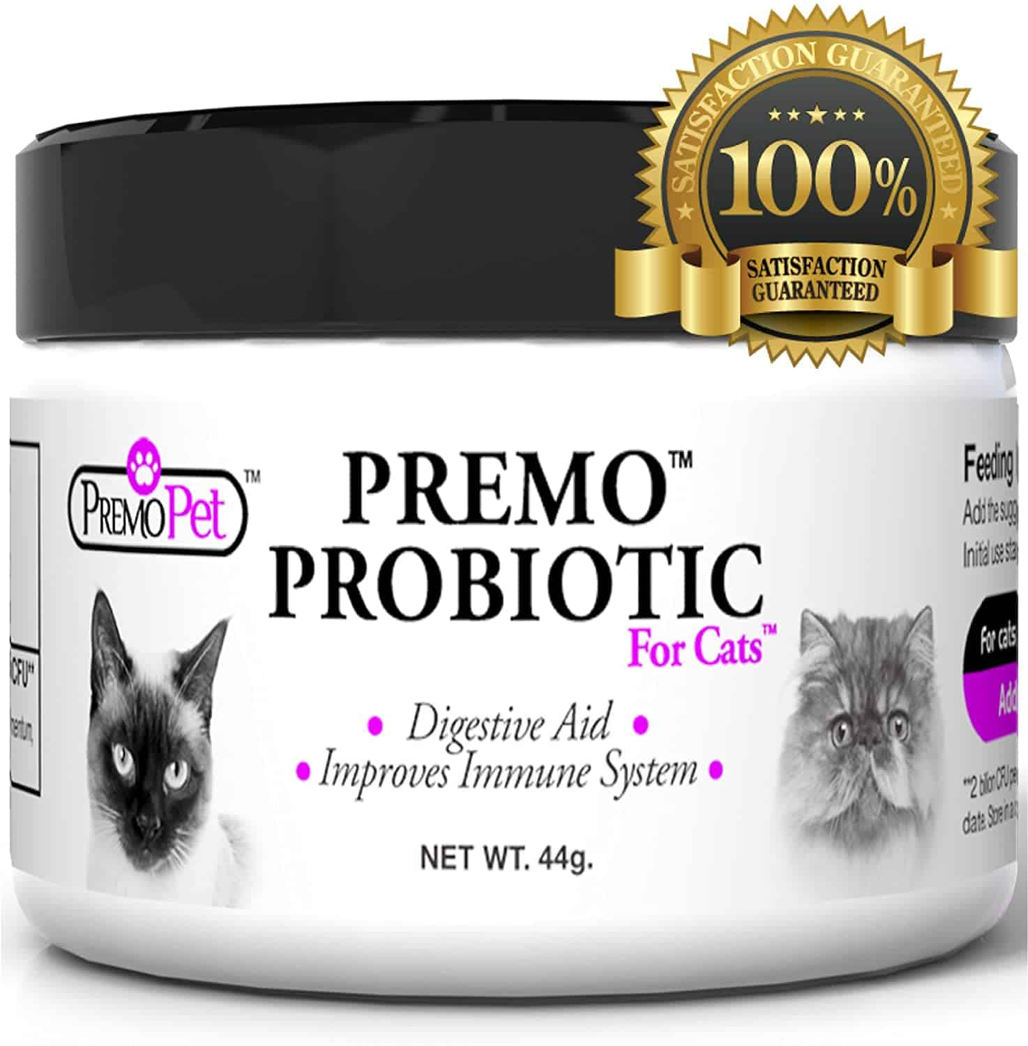 What You Need To Know About Probiotics For Cats 3