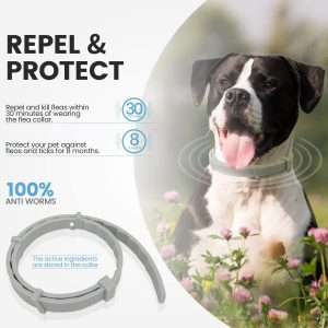Best Cat Flea Collars for 2020: 7 Top Products to Get Rid of Pests 13