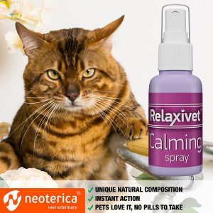 6 Best Cat Calming Spray in 2020: A Buyer's Guide and Review 9