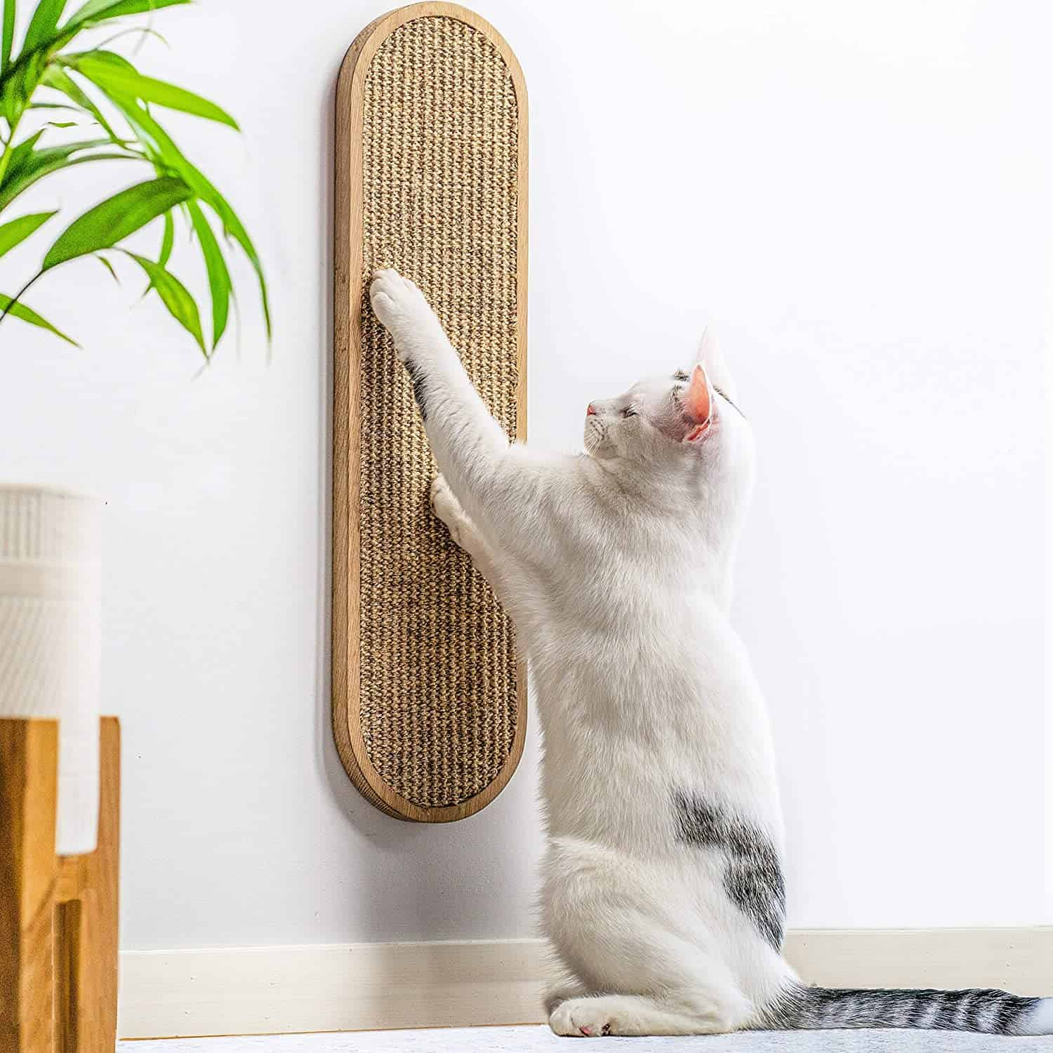 Best Cat Scratching Post: Comprehensive Reviews and Buyer Guide for 2021 9
