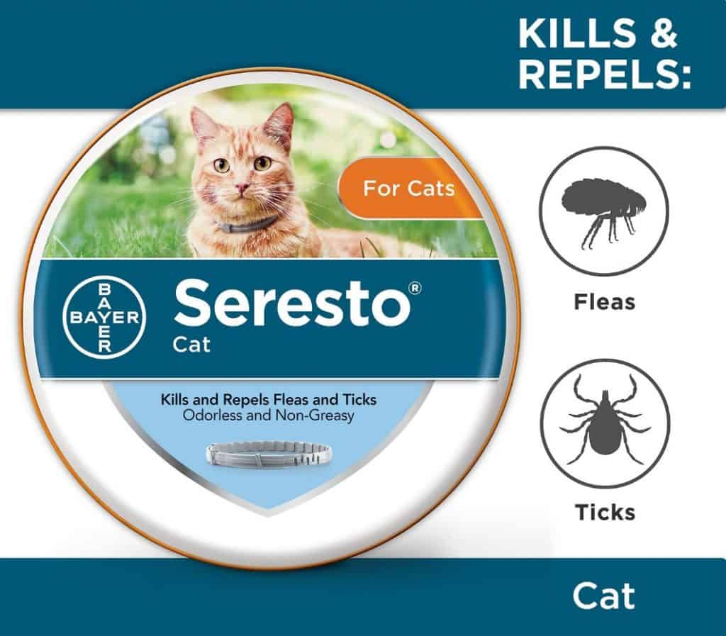 Best Cat Flea Collars for 2021: 7 Top Products to Get Rid of Pests 10