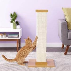 Best Cat Scratching Post: Comprehensive Reviews and Buyer Guide for 2020 20