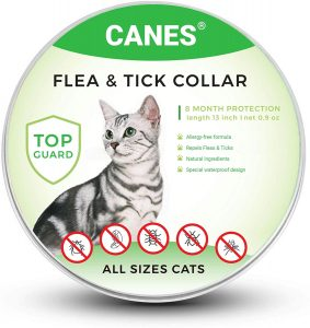 Best Cat Flea Collars for 2020: 7 Top Products to Get Rid of Pests 15