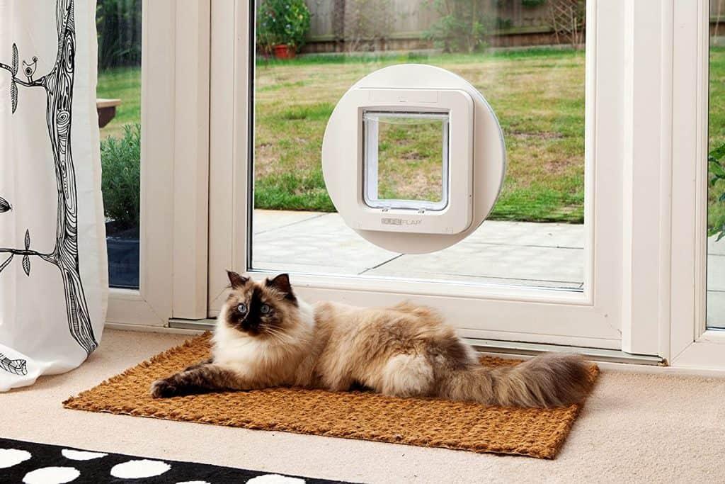 Top 6 Best Cat Doors Reviews 2021: Comprehensive Buyer's Guide 13