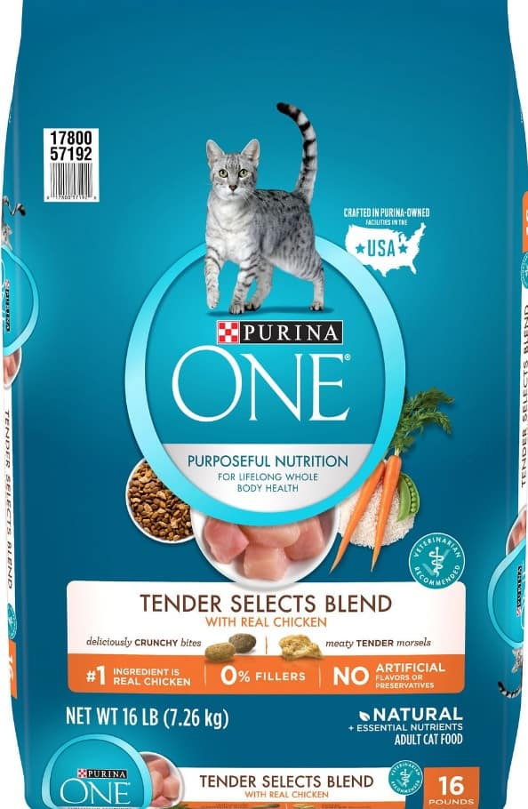2020 Purina ONE Cat Food Review: Find the Best Purina ONE for your Cat 3