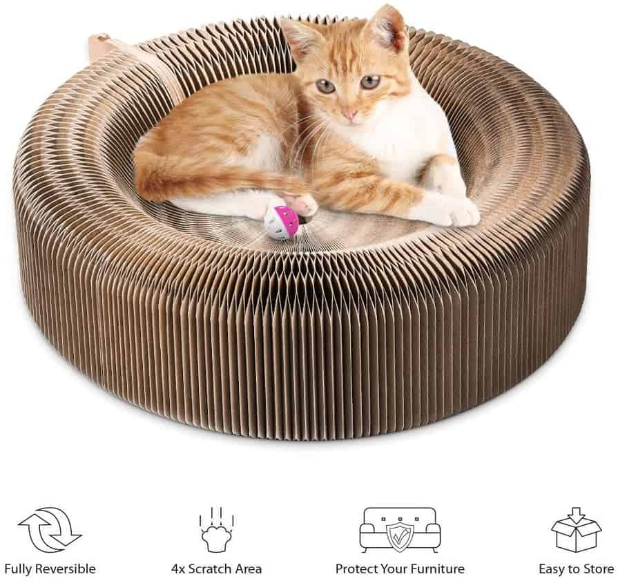 Top 13 Best Cat Toys Reviews - Cool And Engaging Toys For Indoor Cats (And Kittens!) 7