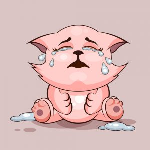 Can Cats Cry? Do They Suffer Depression Too? Find Out Here! 3