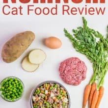 NomNom Cat Food Review