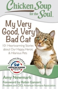 50+ Paw-some Gifts for Cat Lovers to Fit Any Budget! 26