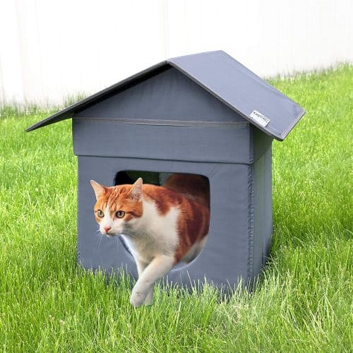 Best Outdoor Cat House for 2020 Plus Reviews of Other Top Picks 16