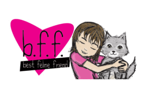 Bff cat food review