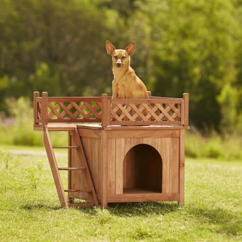 Best Outdoor Cat House for 2020 Plus Reviews of Other Top Picks 19