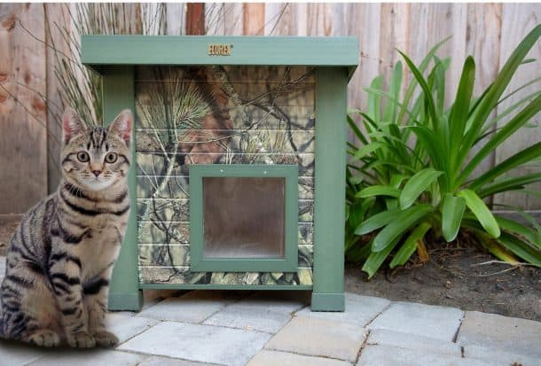 Best Outdoor Cat House for 2020 Plus Reviews of Other Top Picks 20