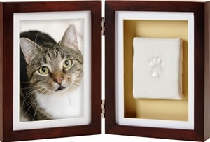 50+ Paw-some Gifts for Cat Lovers to Fit Any Budget! 50