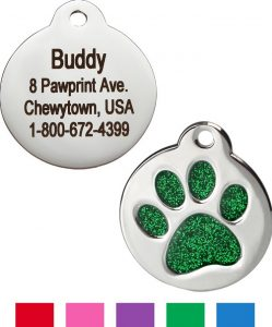 50+ Paw-some Gifts for Cat Lovers to Fit Any Budget! 77
