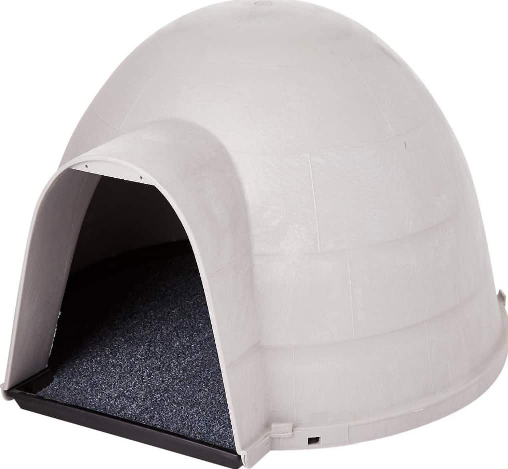 Best Outdoor Cat House for 2020 Plus Reviews of Other Top Picks 4