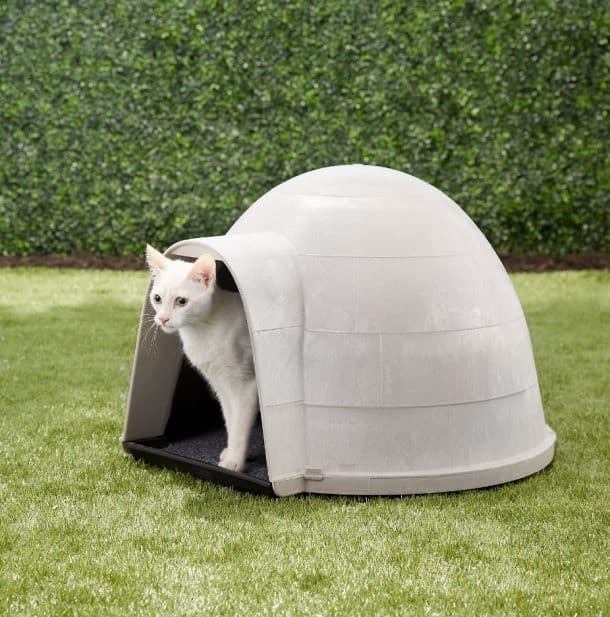 Best Outdoor Cat House for 2020 Plus Reviews of Other Top Picks 17