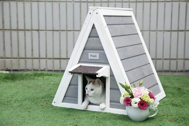 Best Outdoor Cat House for 2020 Plus Reviews of Other Top Picks 23