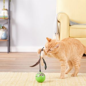 50+ Paw-some Gifts for Cat Lovers to Fit Any Budget! 73