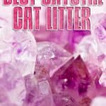 Best Crystal Cat Litter for 2021: Reviews and Buyer's Guide