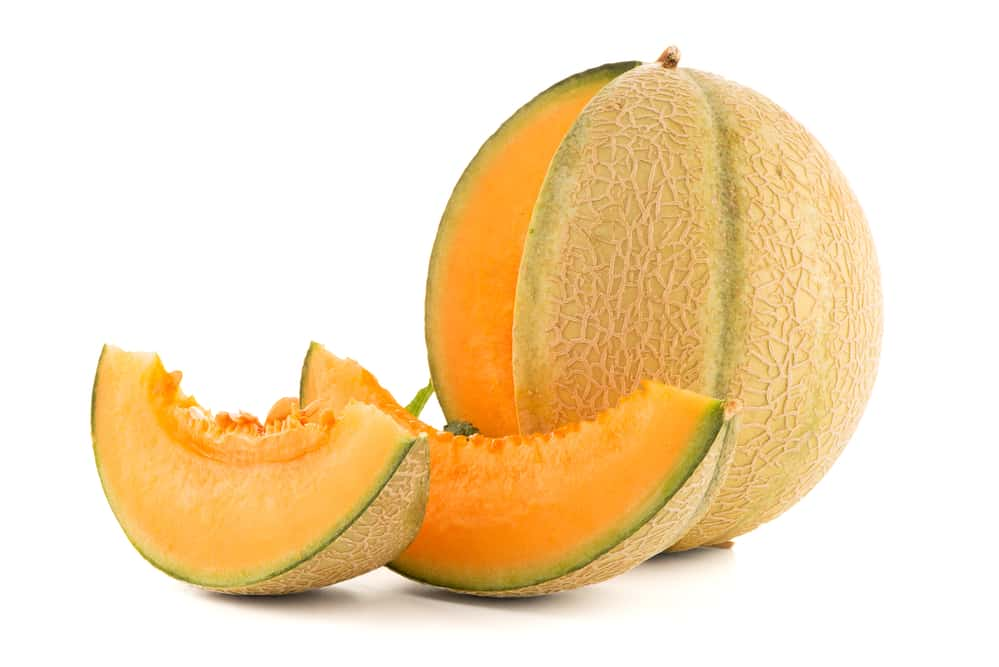 Can Cats Eat Cantaloupe? What Can This Fruit Do To Your Kitty? 1