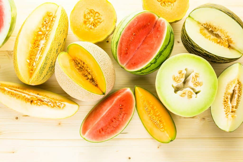 Can Cats Eat Cantaloupe? What Can This Fruit Do To Your Kitty? 4