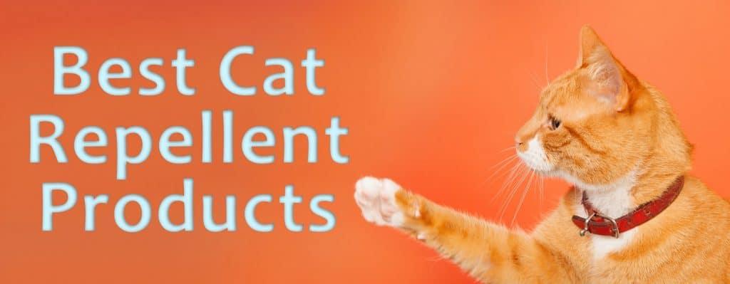 Best Cat Repellent