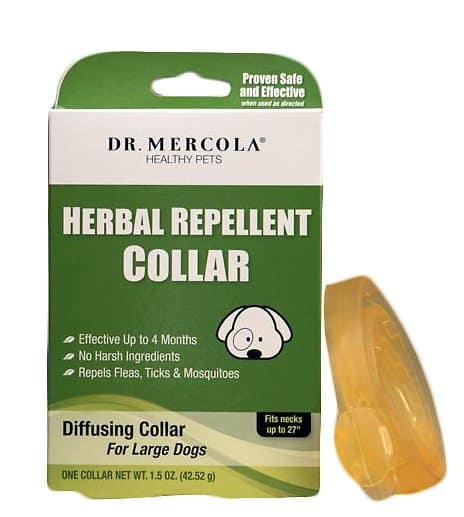 Best Cat Flea Collars for [year]: 7 Top Products to Get Rid of Pests 6