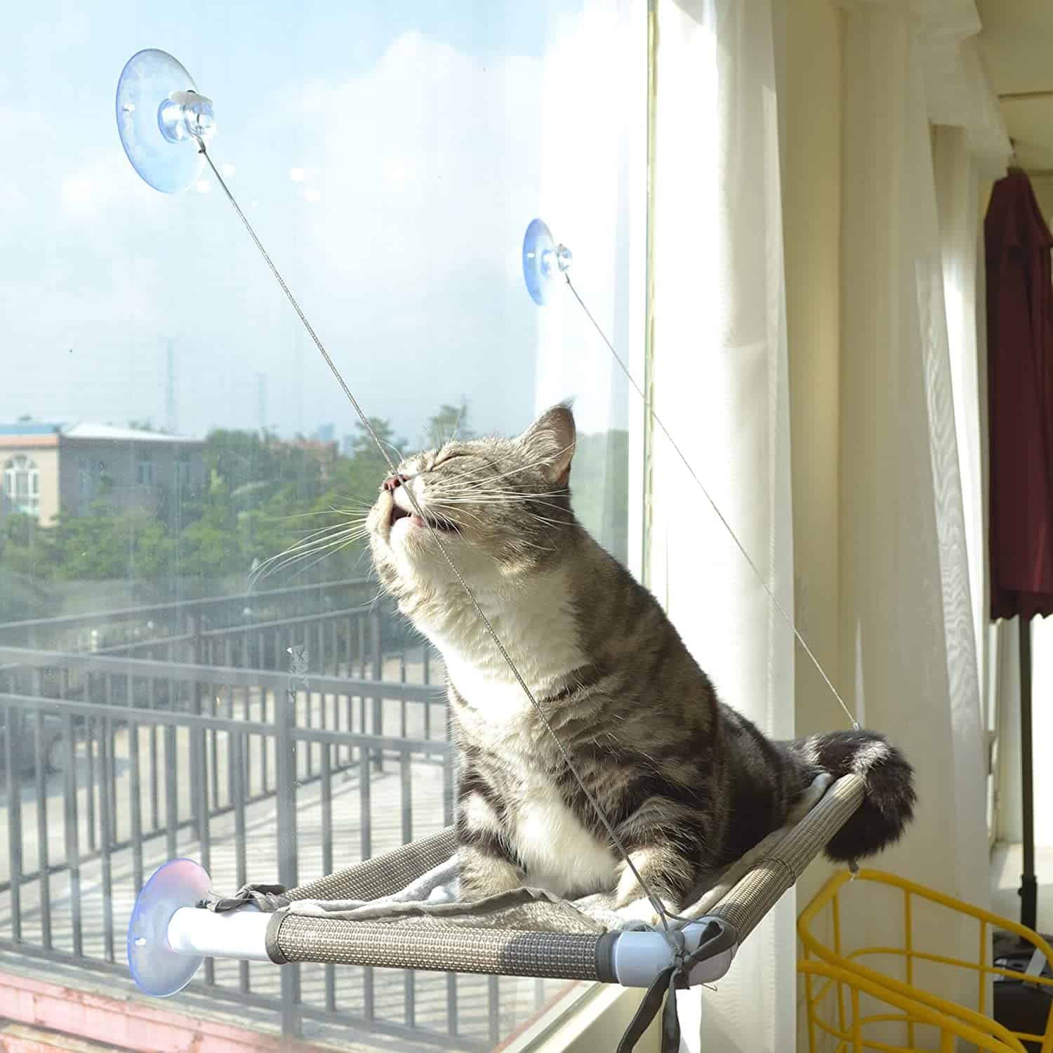 The Best Cat Window Perch of [year]: Exclusive for Felines Who Love Comfort 7