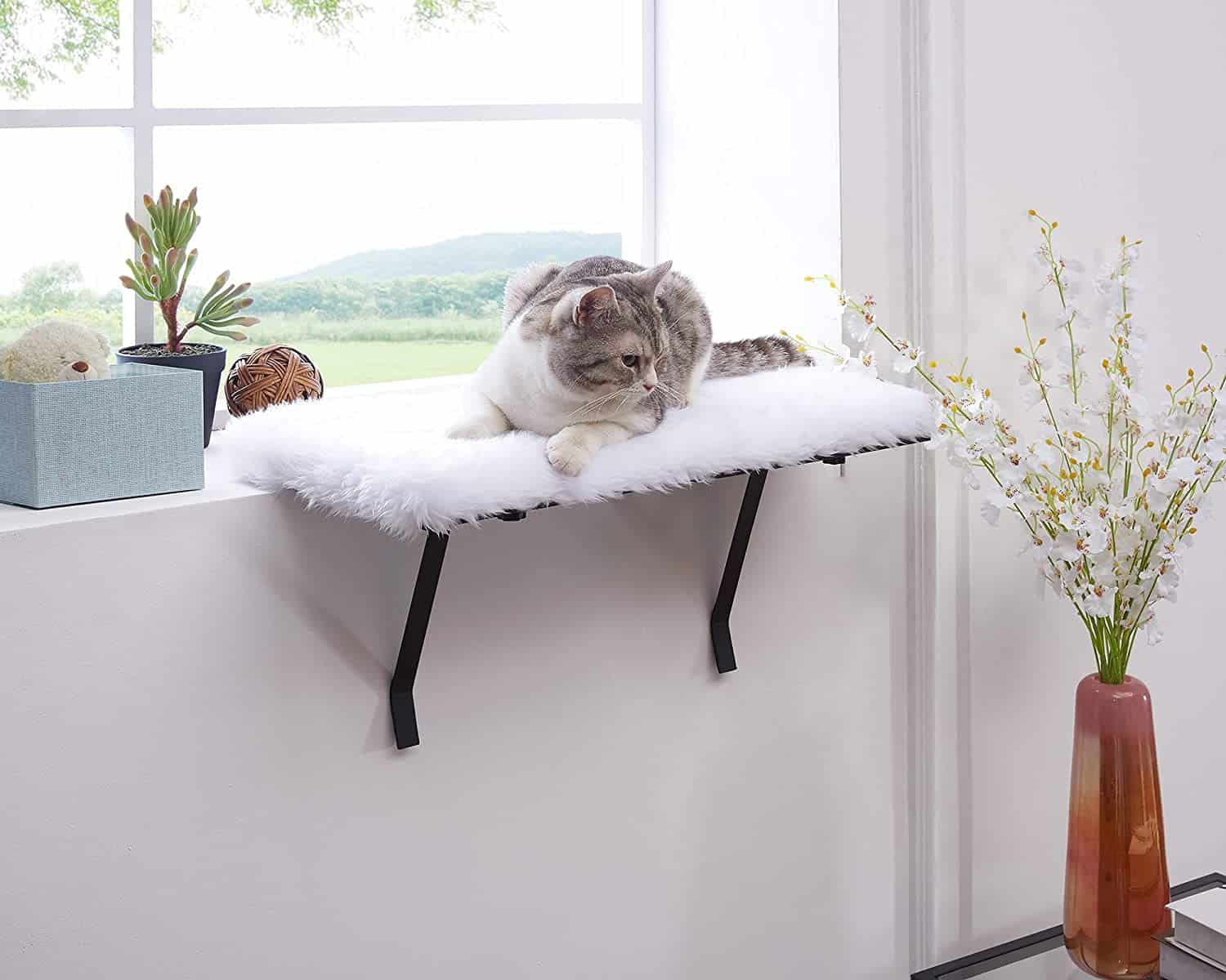 The Best Cat Window Perch of [year]: Exclusive for Felines Who Love Comfort 19
