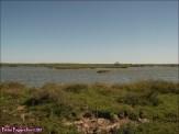 52 - Lagunas de Villafafila1
