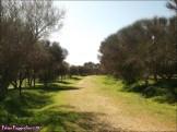 52 - Lagunas de Villafafila11
