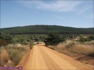 70 - Sierra de la Culebra7