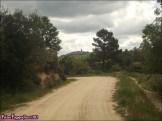 125 - Mogarraz9