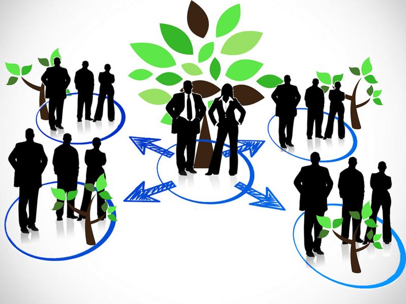 felipe gonzalez gervaso Emprendedor la diversificación en los negocios