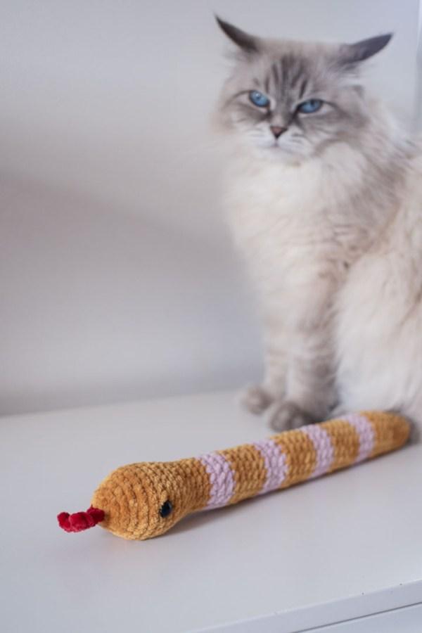 Wąż kopacz dla kota z kocimiętką
